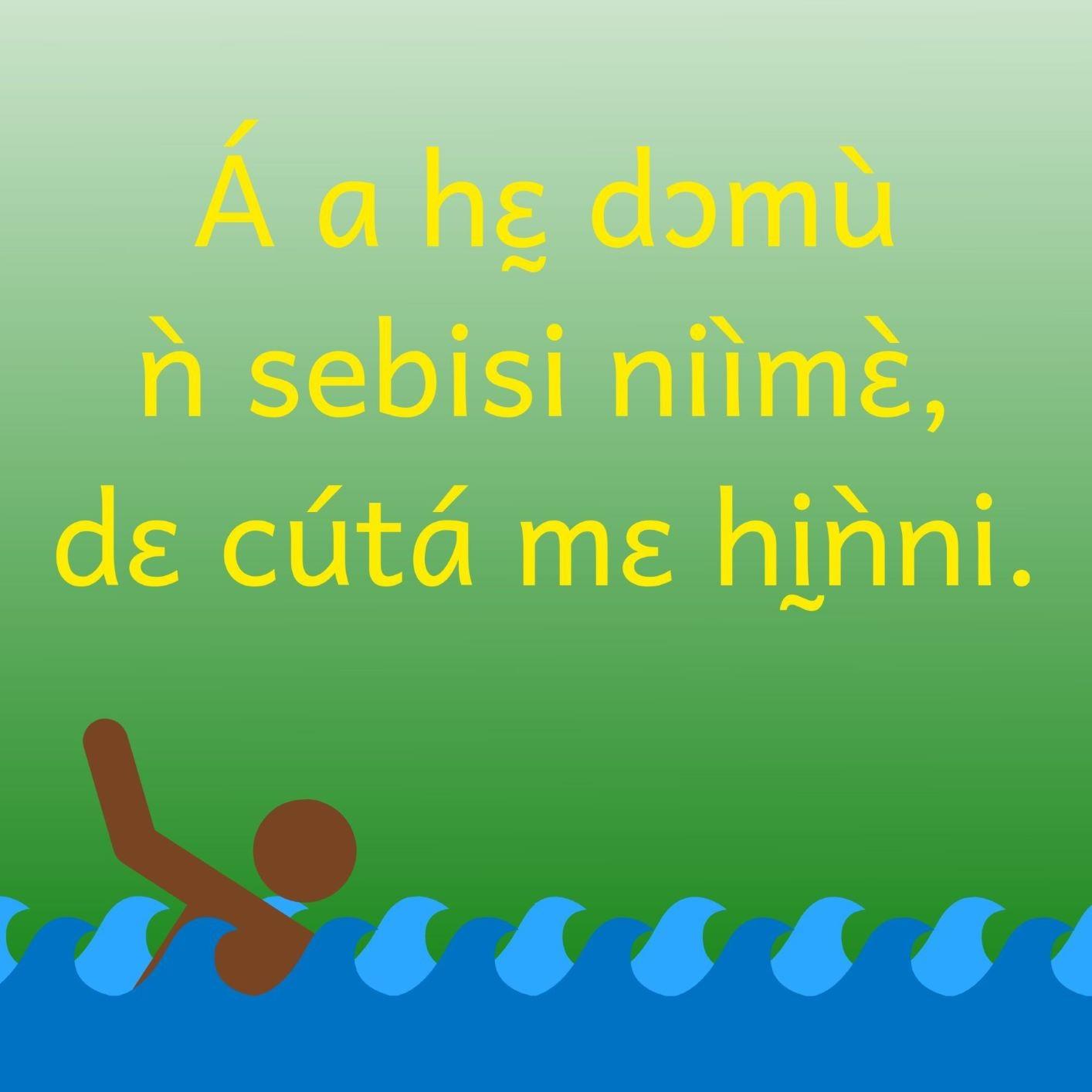Si tu ne sais pas nager, il ne faut pas te jeter dans l'eau. Proverbe béninois